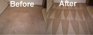 Carpet Cleaning in Queens, NY